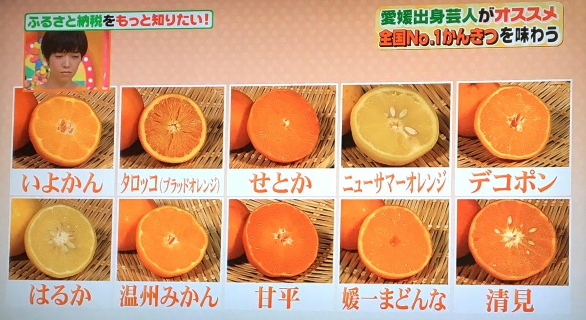 10種類の柑橘類