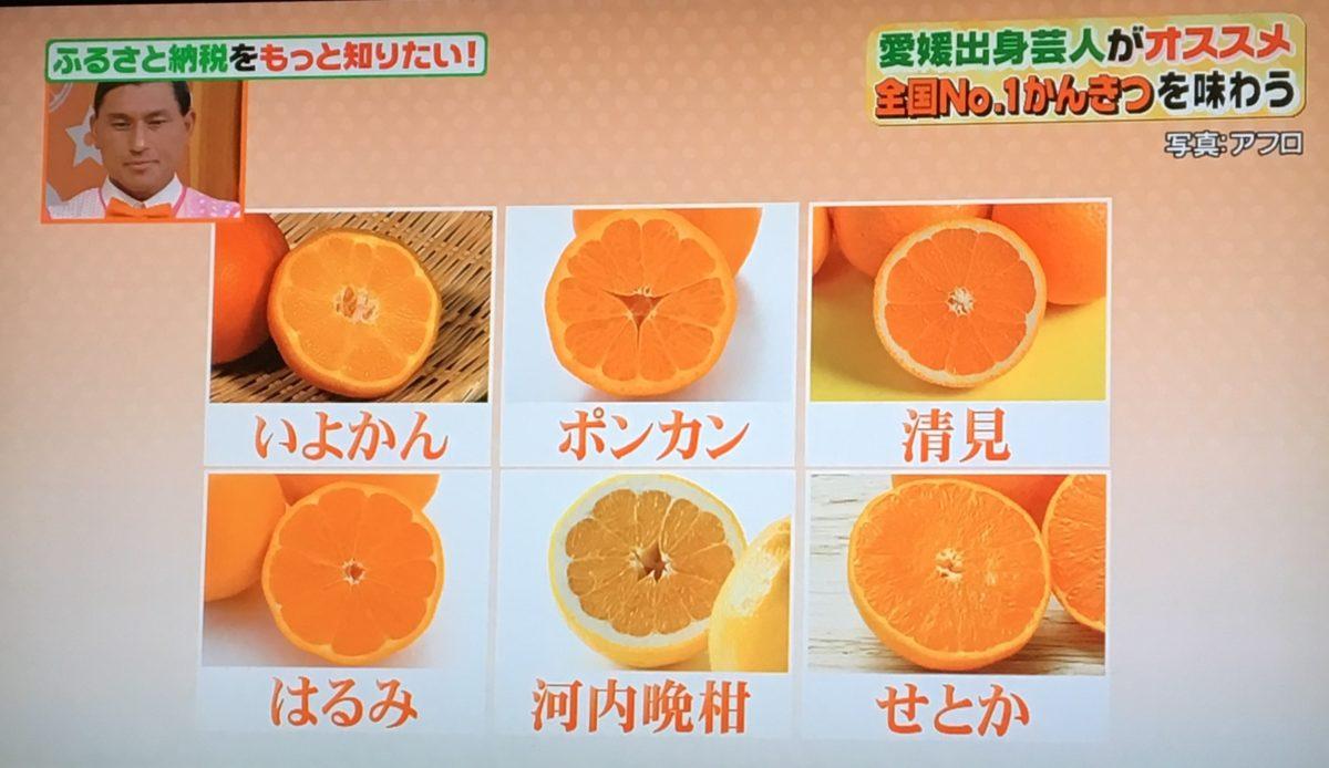 愛媛県のかんきつ類