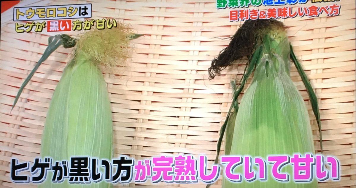 トウモロコシの目利きポイント