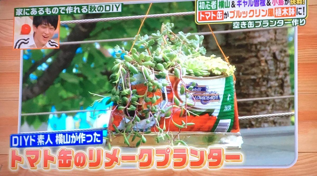 トマト缶で作ったプランター