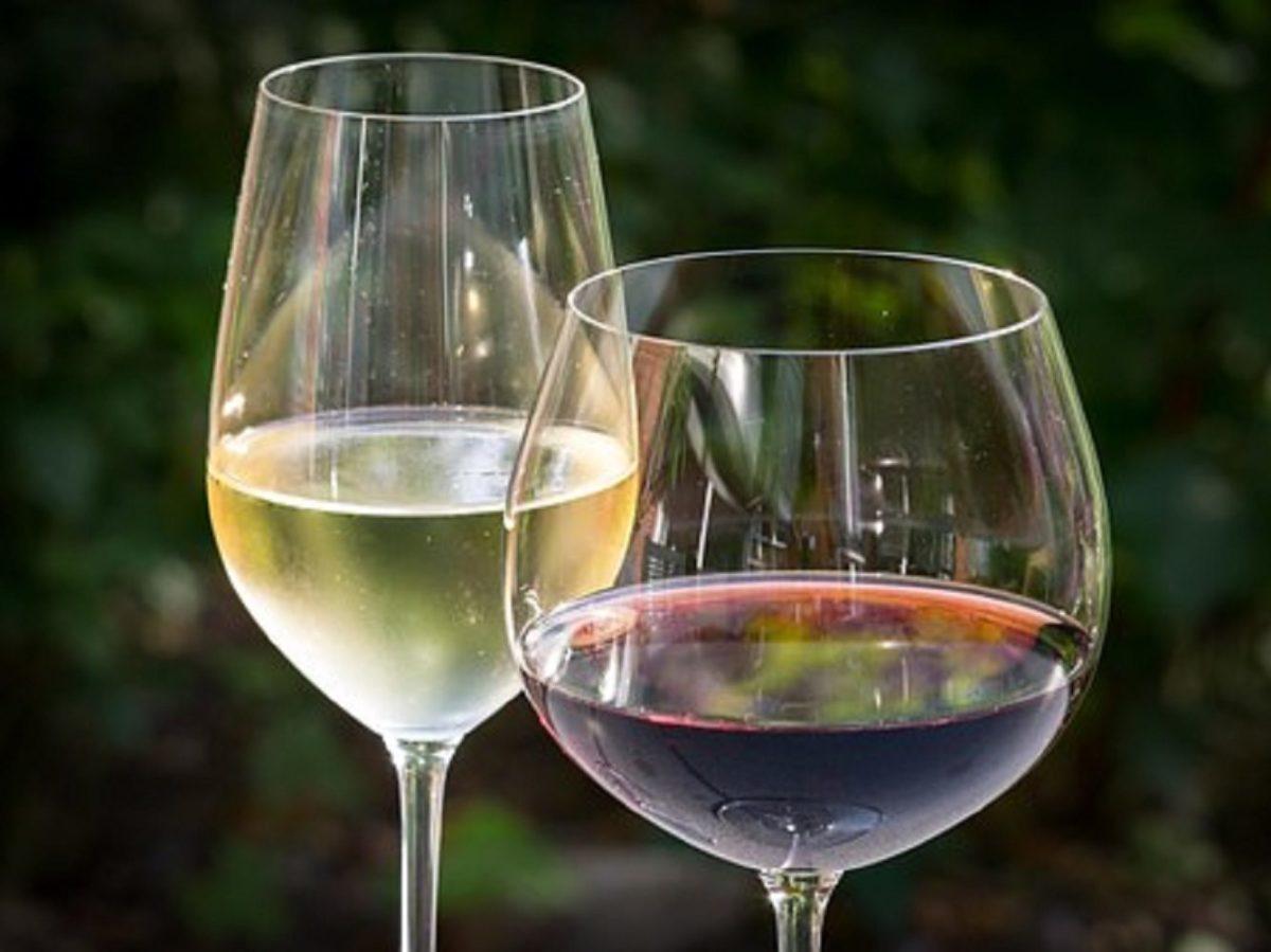 1000円ワイン