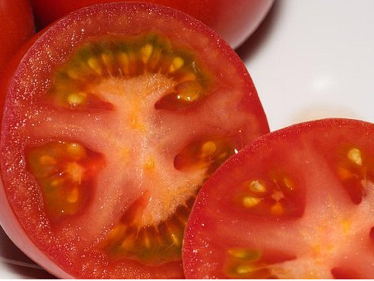 家政婦マコのトマトとみょうがの和風ソース
