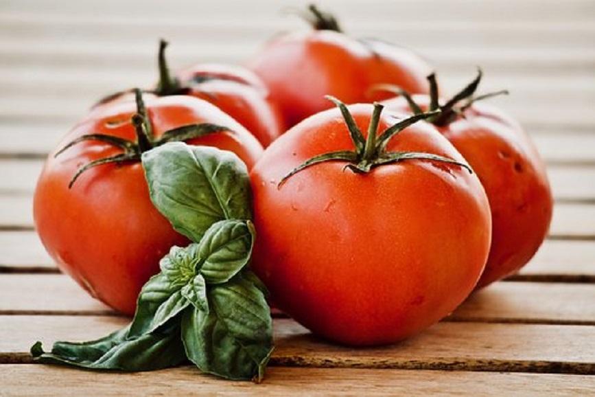 トマト料理のレシピ