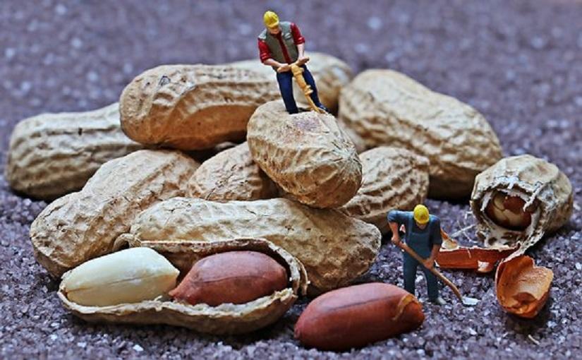 高血圧に効果的なピーナッツ