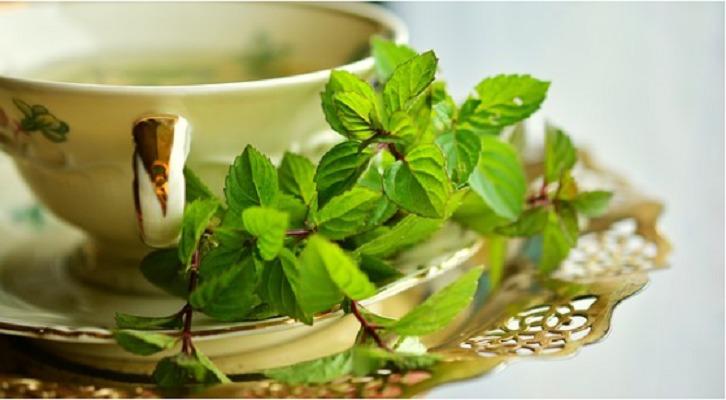 糖尿病に効果的な緑茶