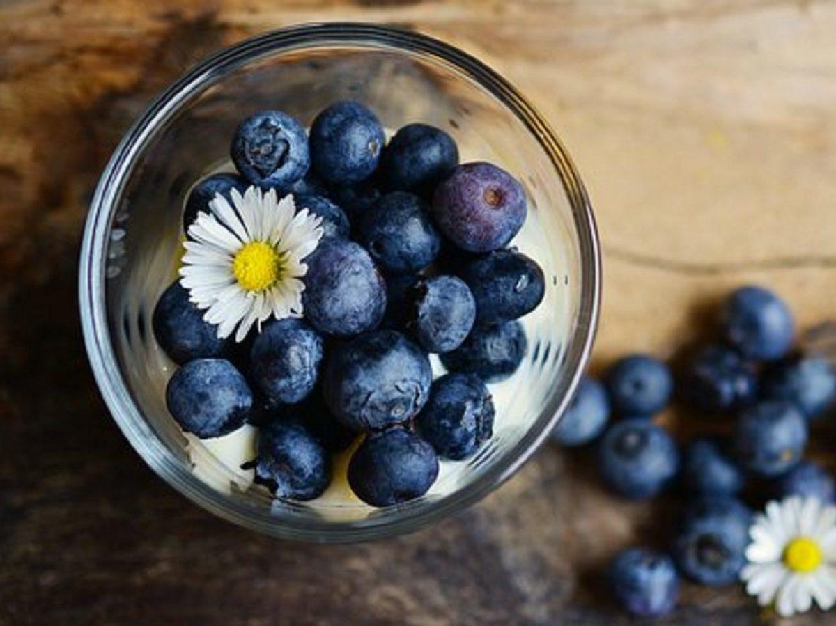 ブルーベリー 血糖 値 果物は1日80kcal!糖対策にピッタリの成分と食べ方をご紹介!