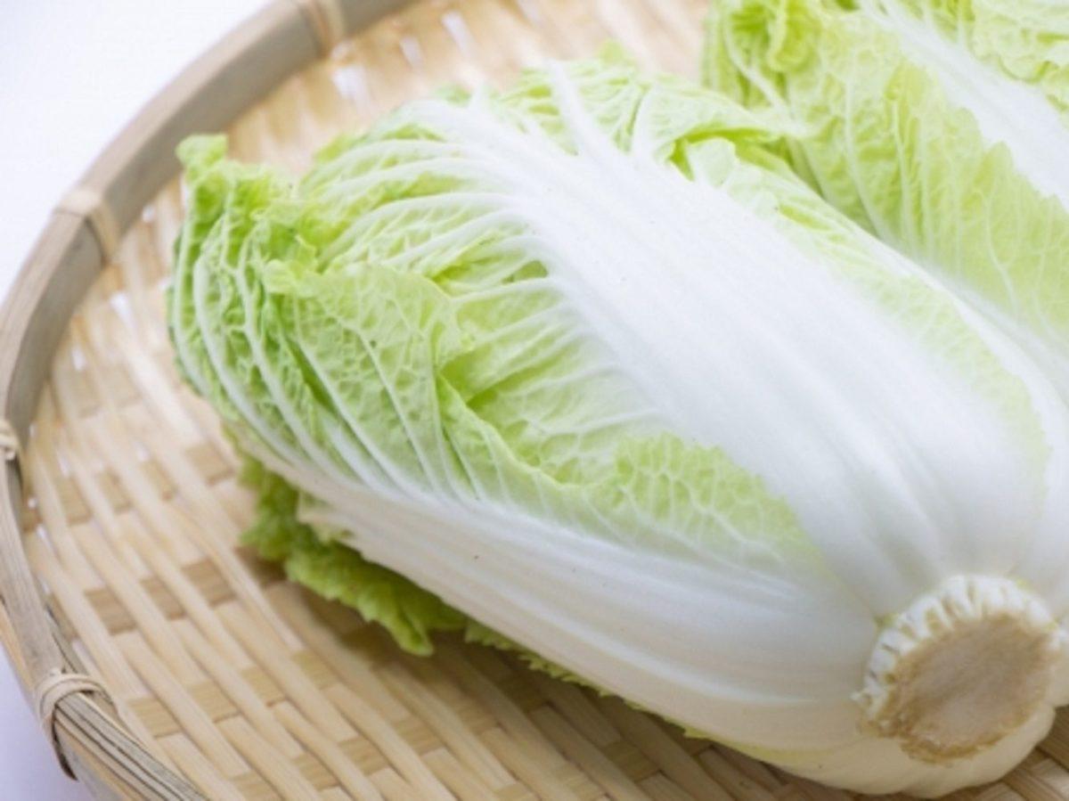 あさイチ!ロール白菜