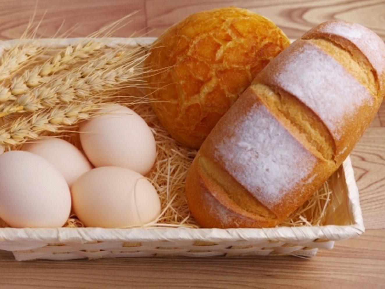 サタプラ!名古屋の鎖国パン