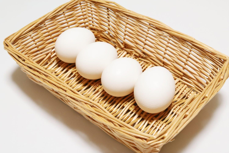卵料理レシピ