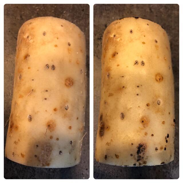 長芋のおかず味噌汁の作り方(工程2-1)