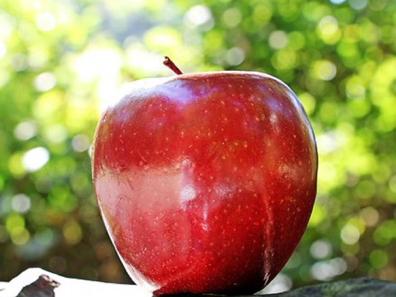 教えてもらう前と後!りんご