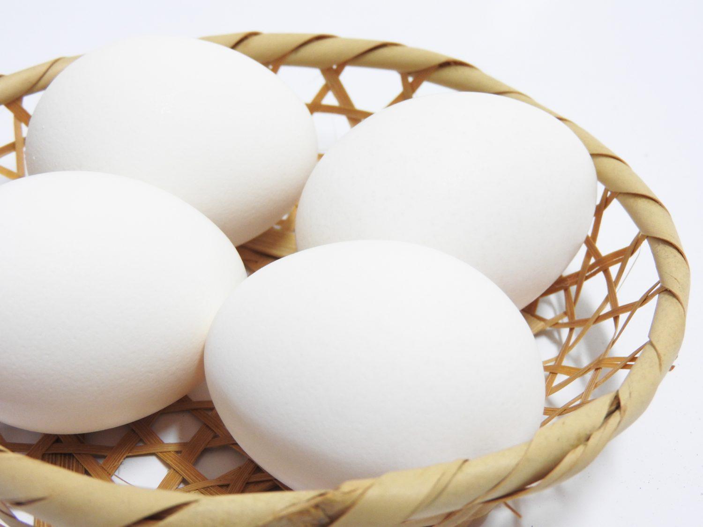ケンミンショーの卵レシピ
