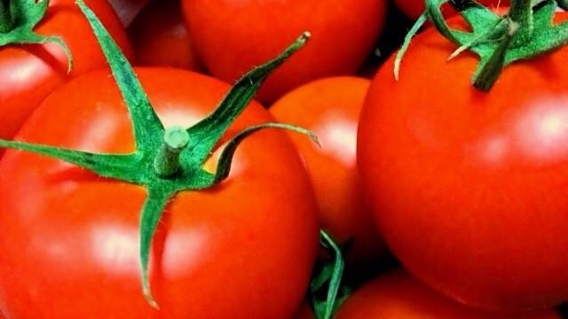 ヒルナンデスのトマトのスープ煮レシピ