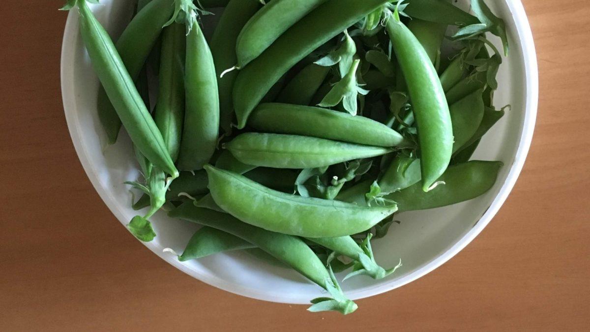 あさイチのスナップえんどうのサラダのレシピ