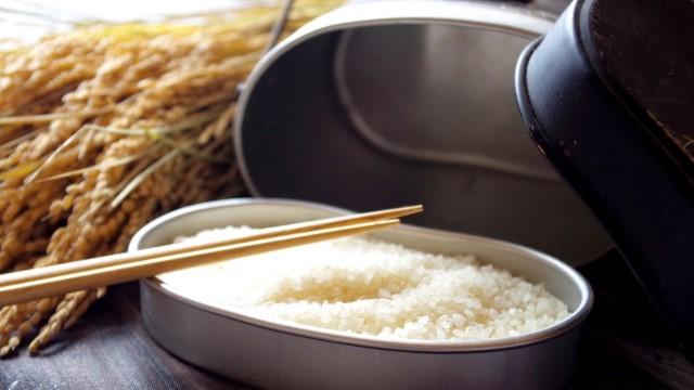 サバ缶ときのこの炊き込みご飯レシピ