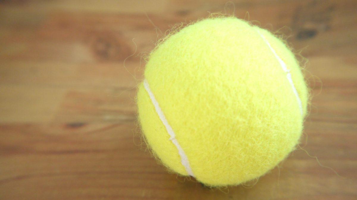【土曜は何する】テニスボールダイエット