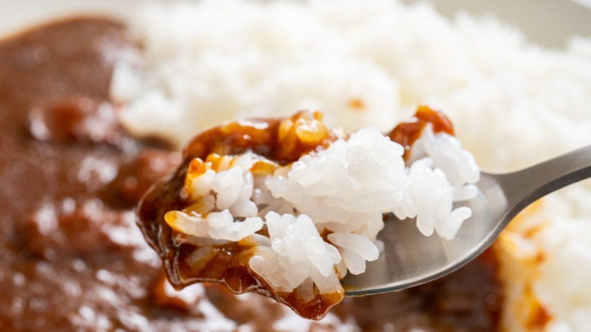 ヒルナンデスの女将飯のカレーレシピ