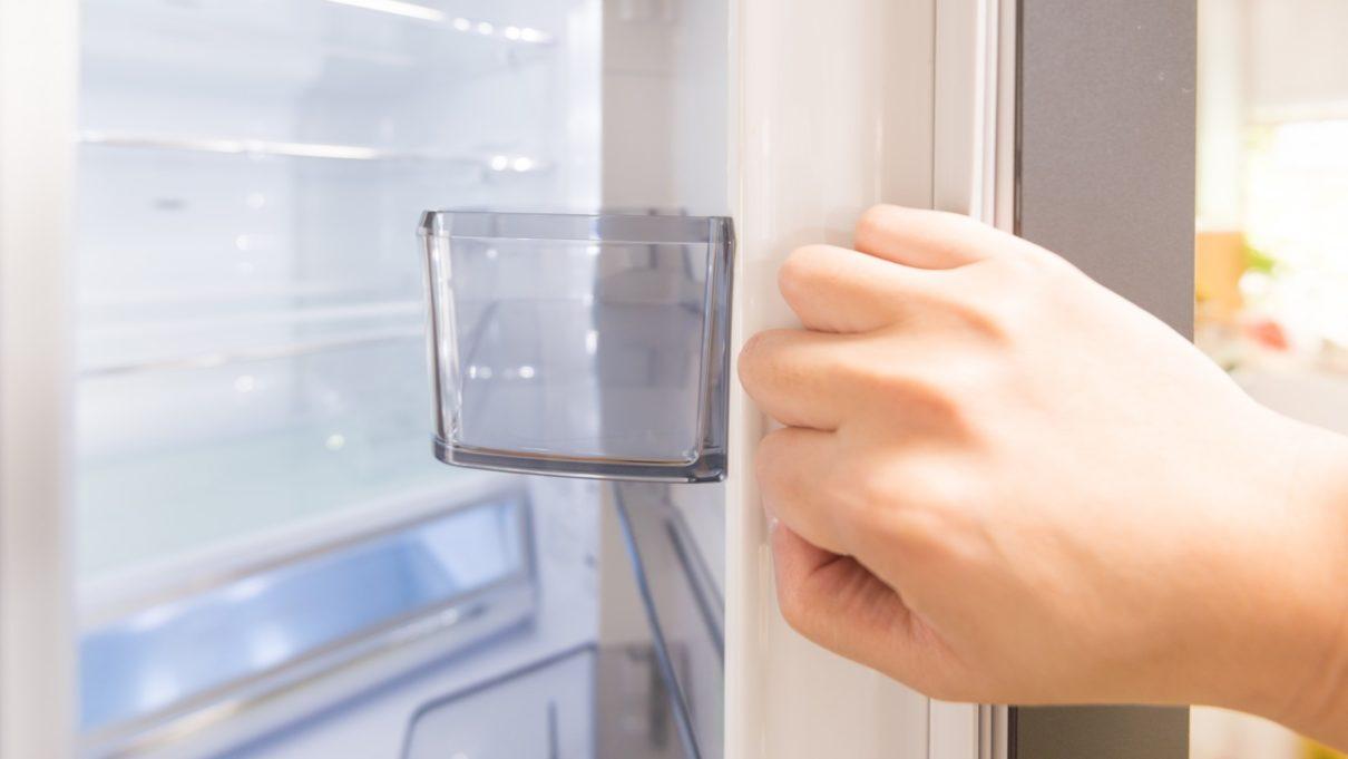 ヒルナンデス 掃除家電 冷蔵庫 ベジータ