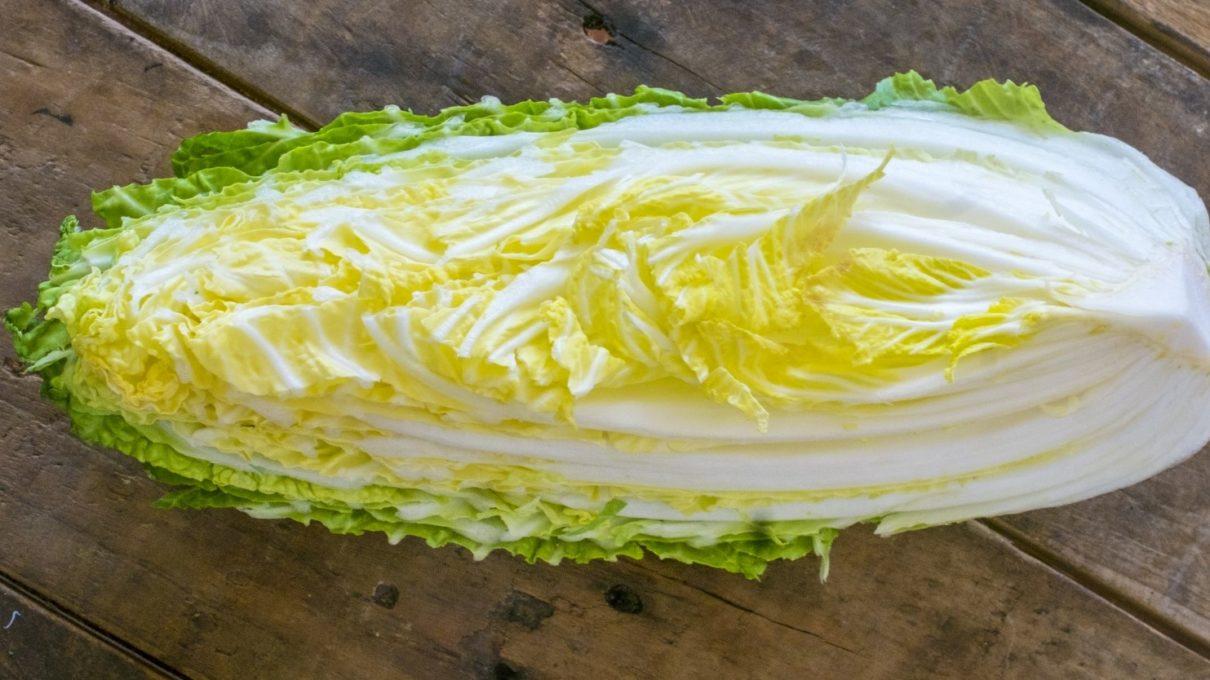 白菜料理レシピ